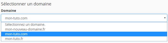Sélection du domaine dans l'éditeur de zone DNS avancé