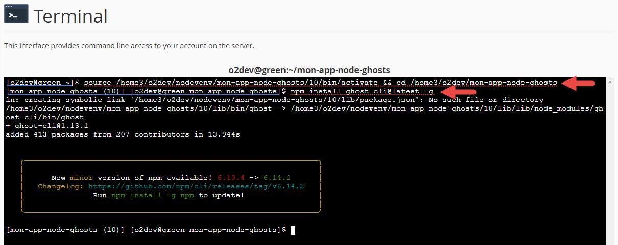 Environnement nodeJS en SSH ou dans le terminal