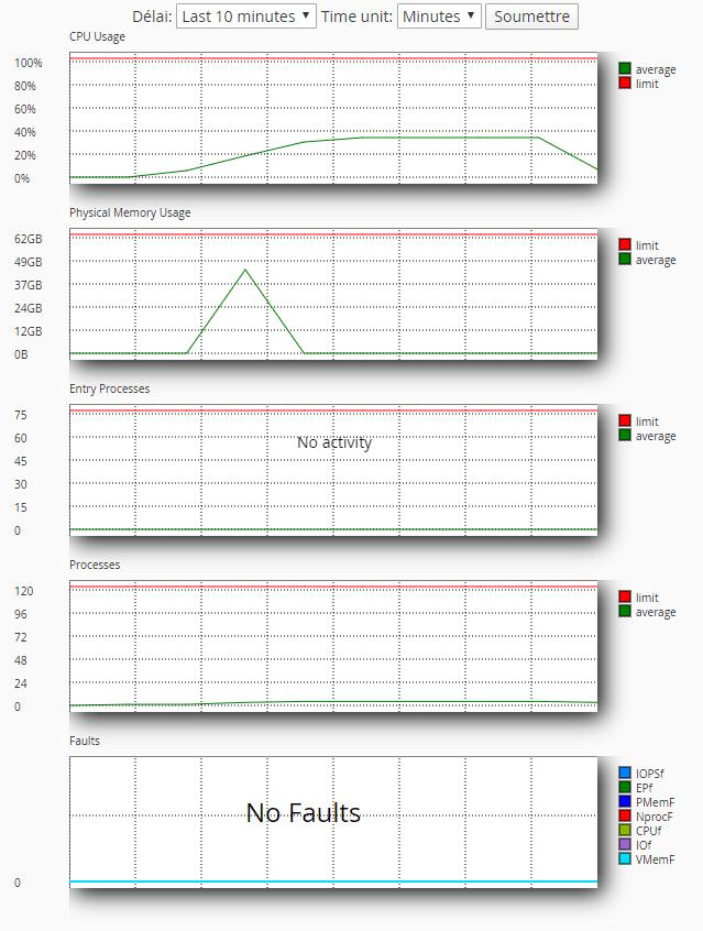 Exemple de graphique de consommation des ressources d'un hébergement